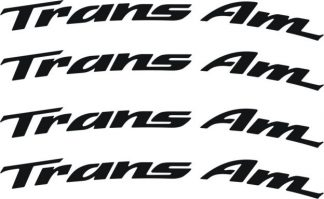 Trans-Am Wheel Decals curved